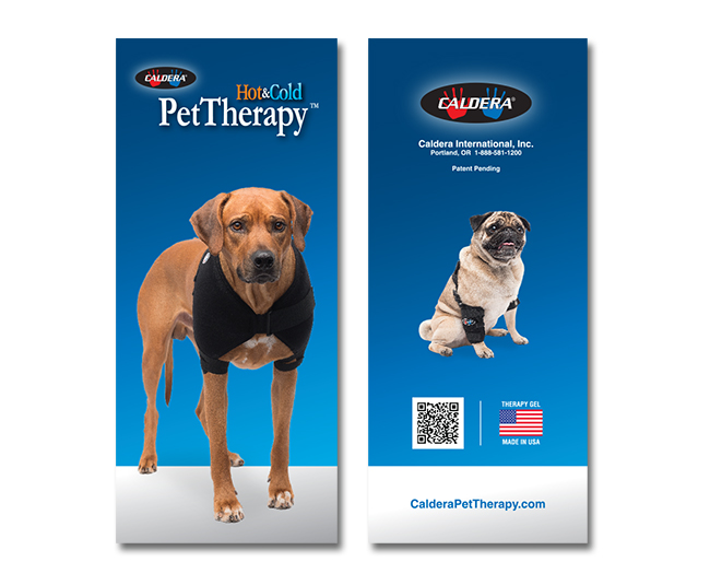 d30n llc, Caldera Pet Therapy, brochure