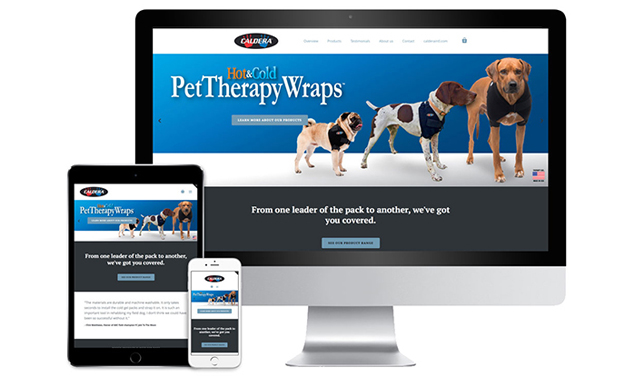d30n llc, Caldera Pet Therapy, retail website, Branding and Design Portland Oregon