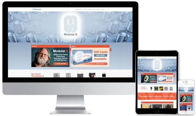 Modular 8 – eCommerce Website